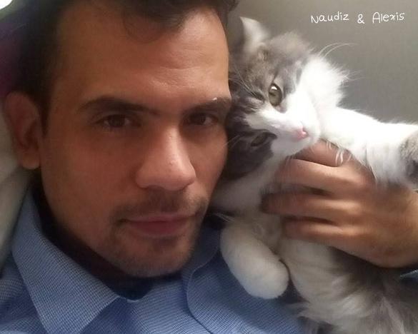 12 de Noviembre de 2014 - Naudiz (camada Runen) Vivirá en el criadero AR*Blind Love con miamigo Alexis. Lindo que después de tanta charla seamos familia finalmente